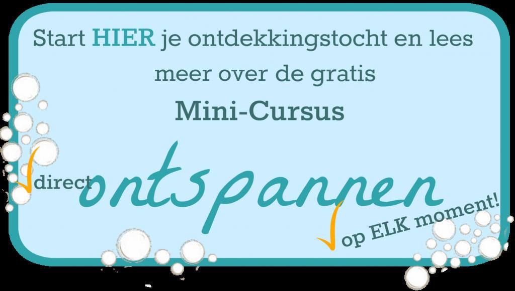 mini-cursus-home-page2